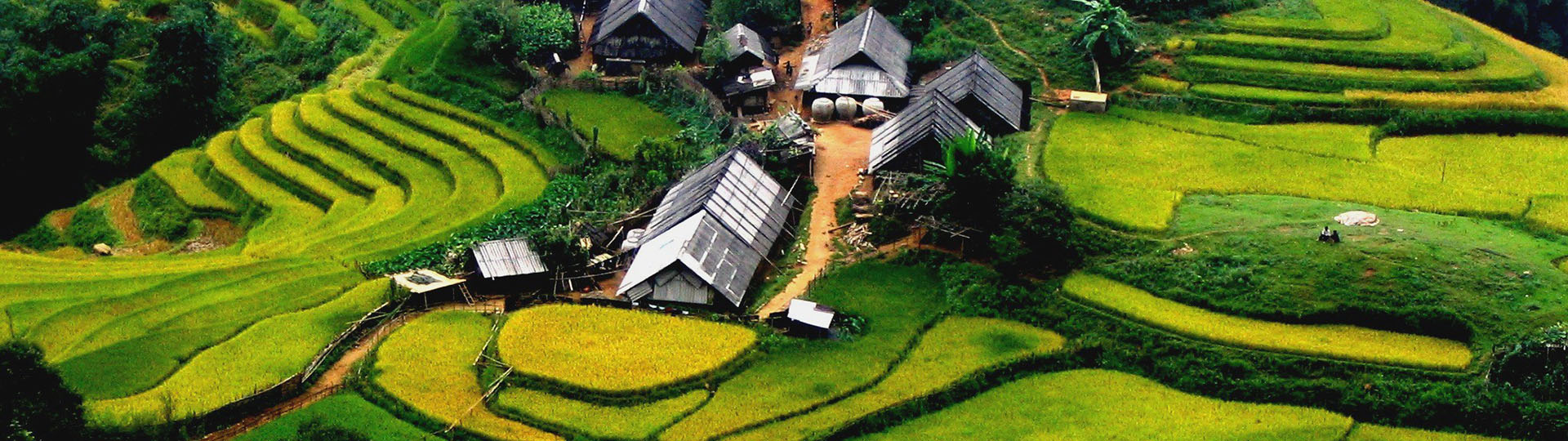 The highlight beauty of Vietnamese villages