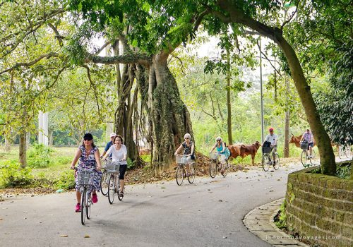 Ninh Binh – Trang An Private Day Tour