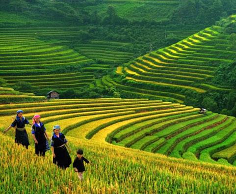 Grand Sensational Vietnam 20 Days
