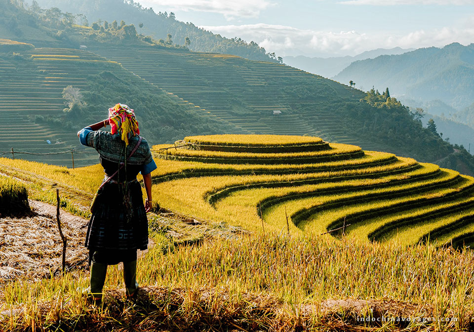 3 interesting suggestions for buying gifts in Sapa