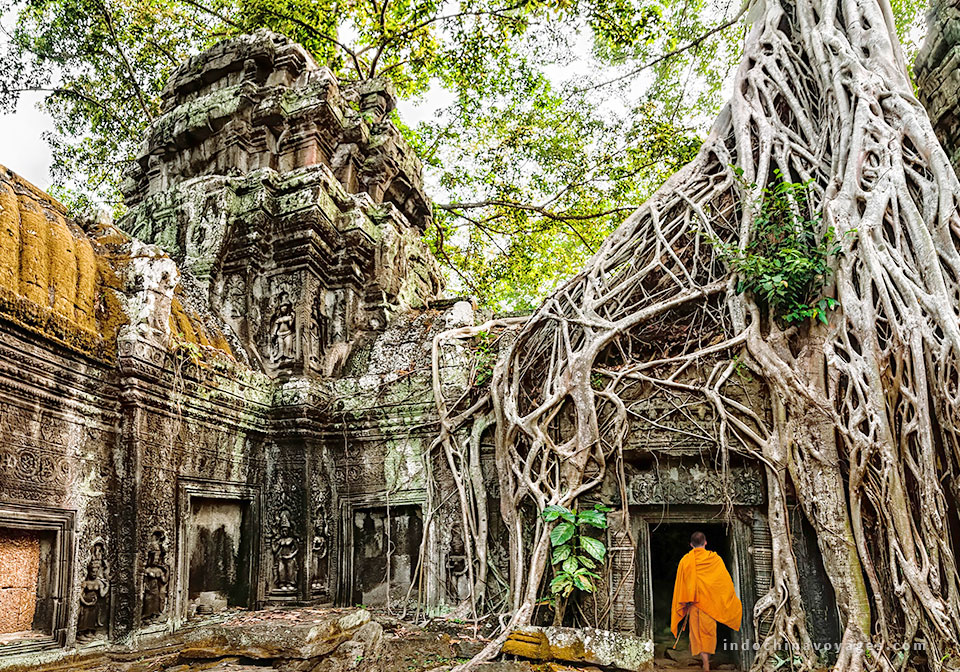 Ta Prohm - Monks and Tree roots
