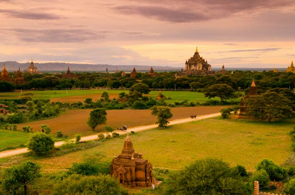 Cart horse is a popular vehicle that many visitors choose when traveling Bagan