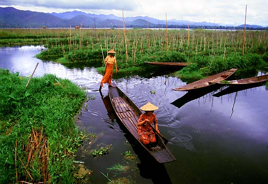 The Inle floating gardens