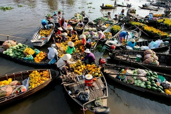 Bustling Cái Bè Floating Market every morning