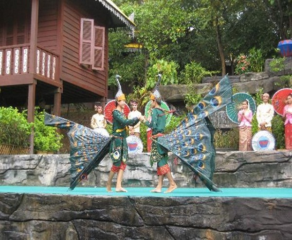 Peacock Dance performance