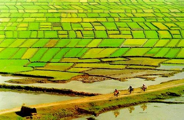 Very original countryside scenery