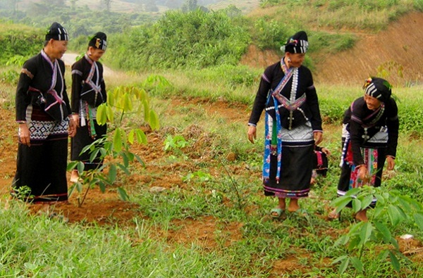 In Sapa biking tours, travelers have chance to meet minority people and explore their life