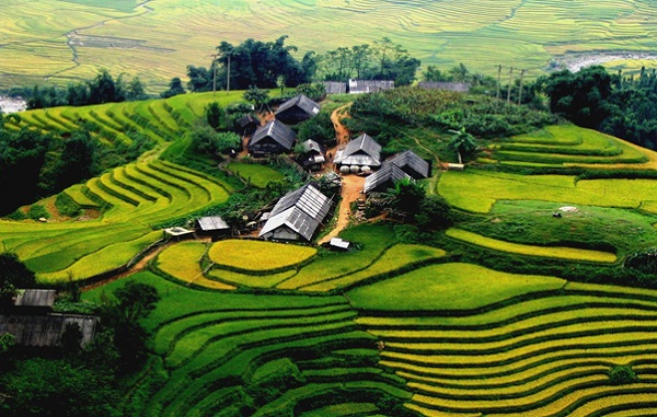 The whole Cat Cat village is surrounded by green fields