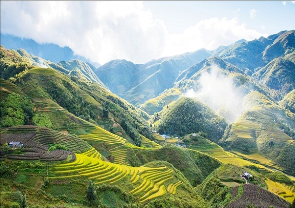 Overview of Sapa