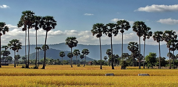 Takeo Province, the land to discover in Cambodia