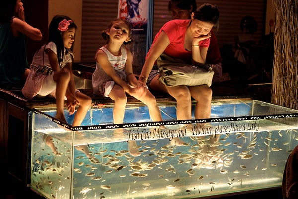 Fish massage in night market in Siem Reap, Cambodia