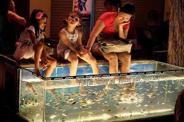 Fish massage in night market in Siem Reap, Cambodia