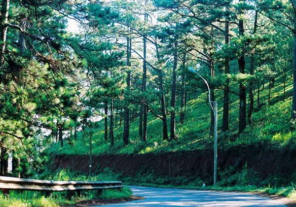 Dalat has much romantic scenery