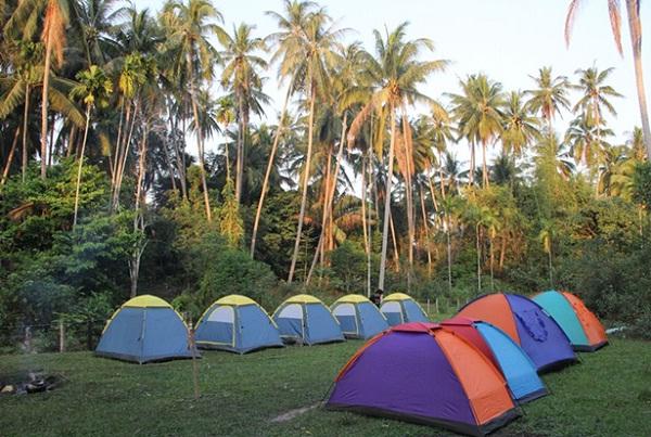 Camping in Jungles