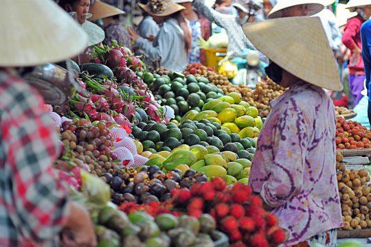 vietnam-cultural-highlights