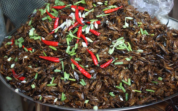 Deep fried crickets seasoned with chili