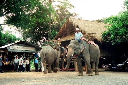 Don Village – the most attractive destination in Vietnam