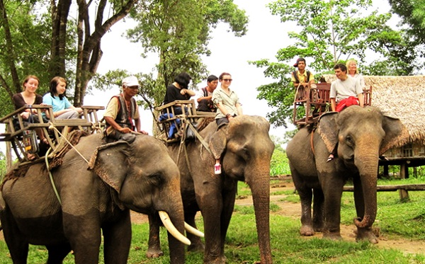 Don Village has long standing hunting and taming wild elephant tradition