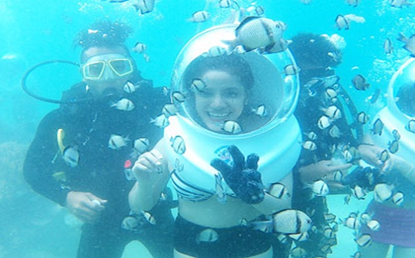 Travellers admiring beautiful fishes and eye catching corals under the ocean