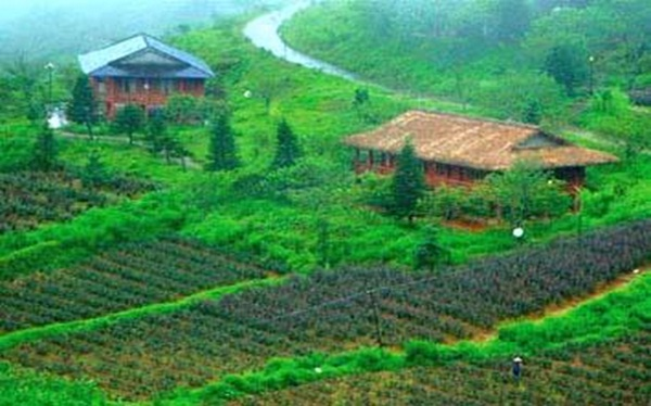 Ati Sapa Rose Valley Resort is a model of ecotourism