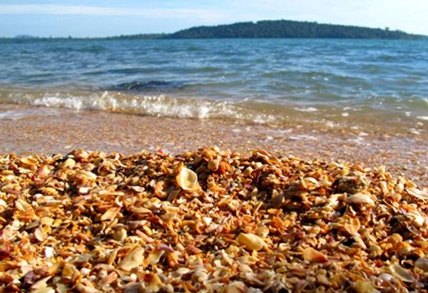 Stunning shells