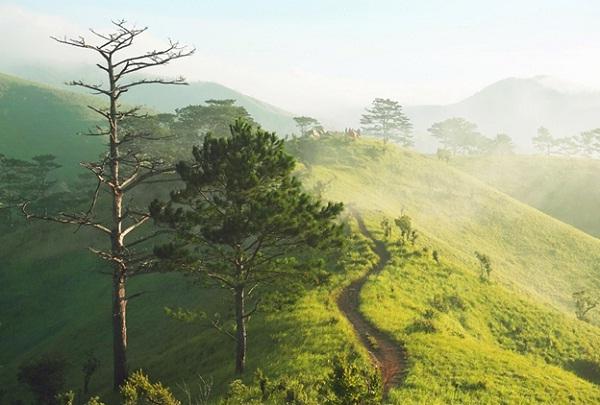 Ta Nang - Phan Dung path