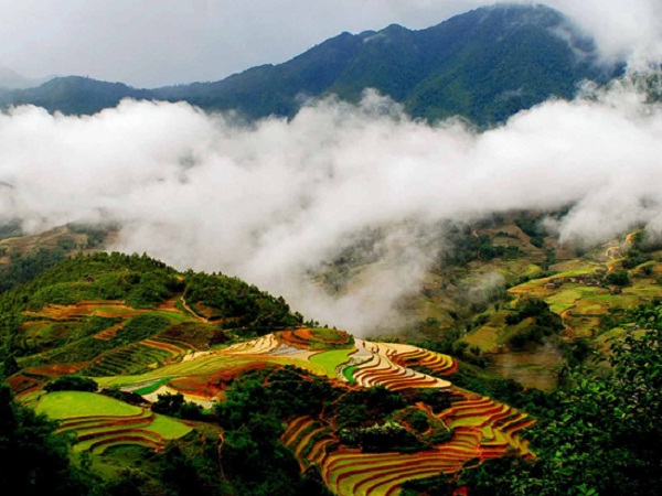 Amazing landscape in Sapa
