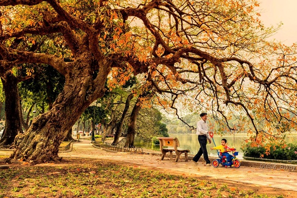 Hanoi autumn is very famous for its beauty