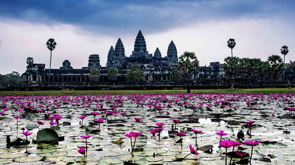 The romantic lake in front of the temple Angkor Wat