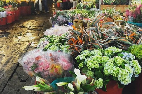 Best time to visit the Ho Thi Ky flower market in Saigon