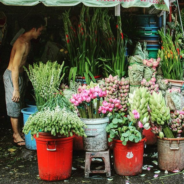 The flowers in Ho Thi Ky flower market are very fresh and beautiful