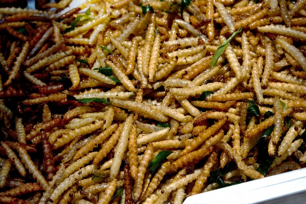 Cuisines from insects of Laos, do you dare to tasteCuisines from insects of Laos, do you dare to taste