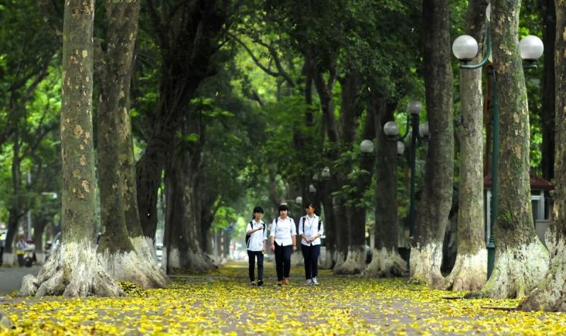 Hanoi autumn on Phan Dinh Phung St