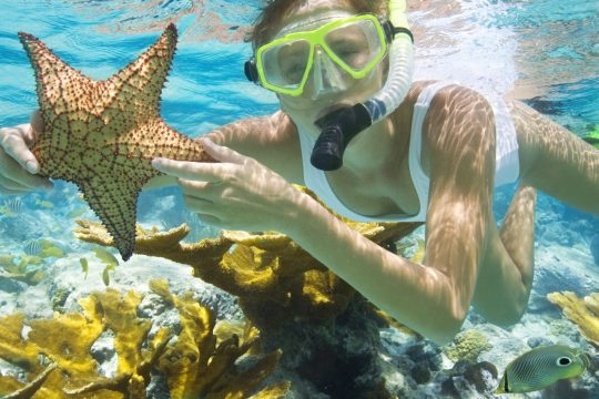 Have you tried diving, snorkelling and boat trips in Phu Quoc?