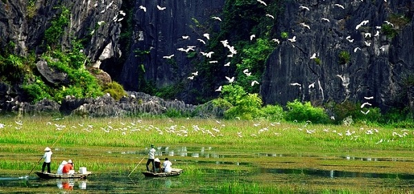 the-beauty-of-Van-Long-lagoon