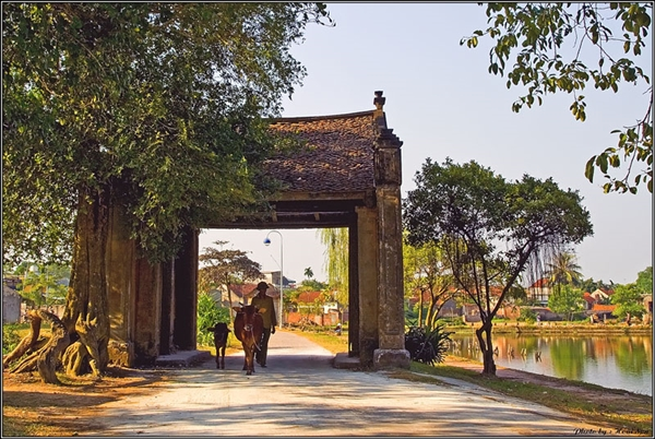 The first image will attract your attention when you set your foots on Duong Lam ancient village