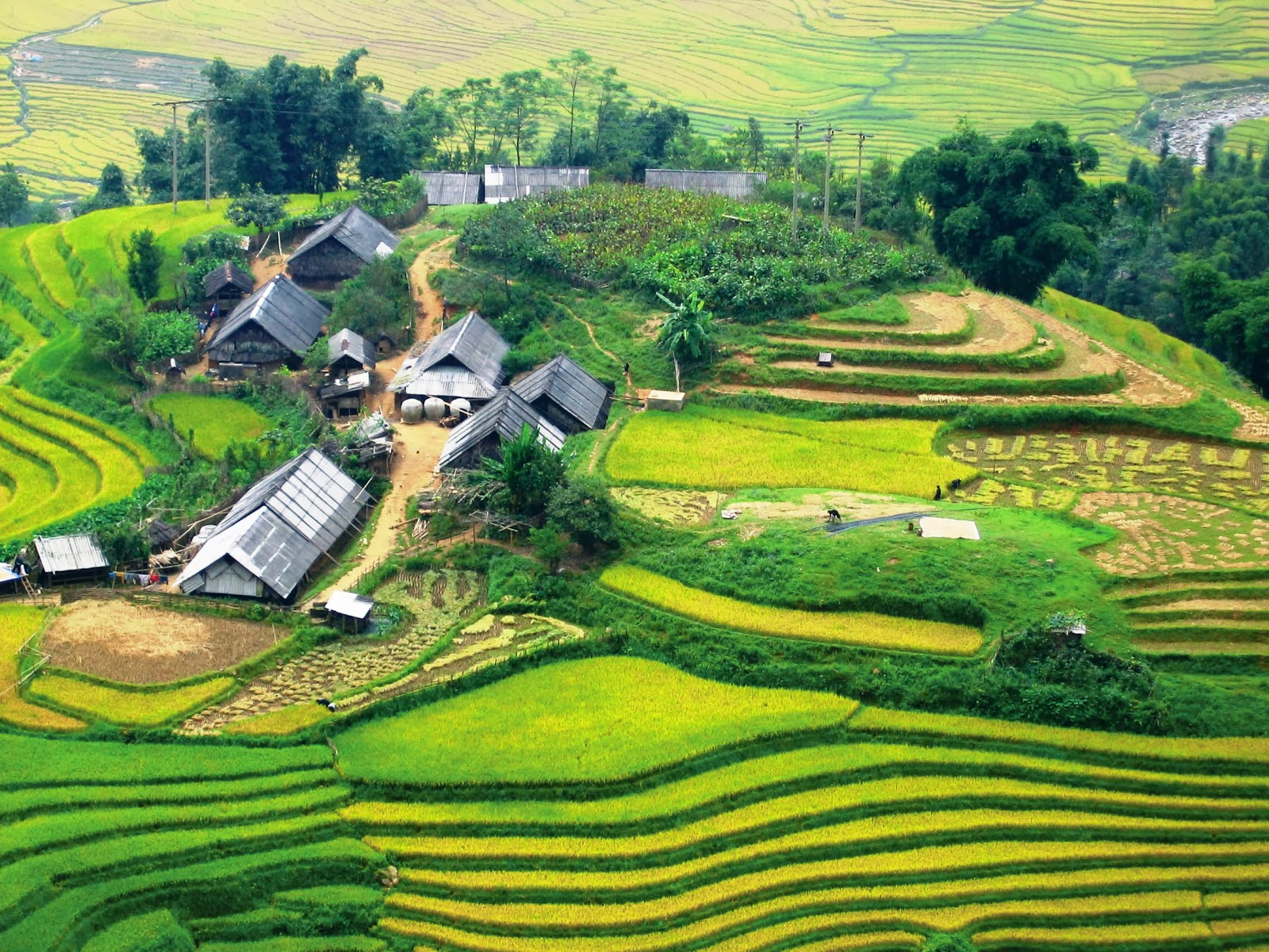 The beauty of Sapa seen from above in summer