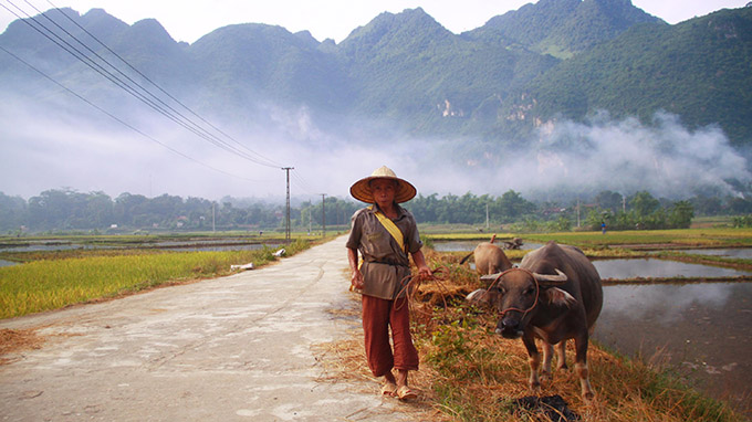 An ordinarily and simply scene in Mai Chau