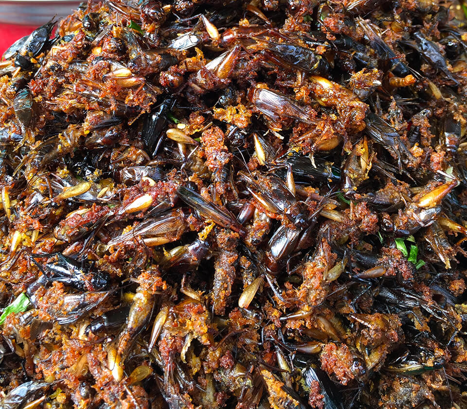 Deep fried crickets in Siem Reap