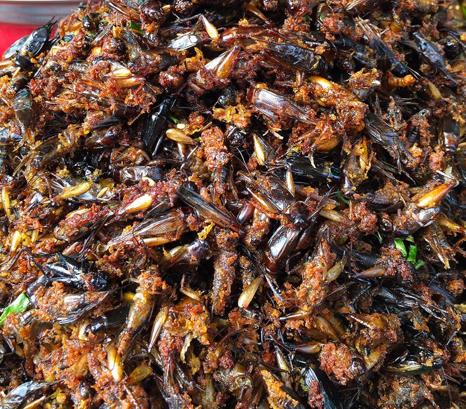 Deep fried crickets in Siem Reap