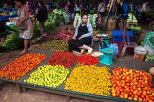 Southern Laos Adventure 7D – 6N