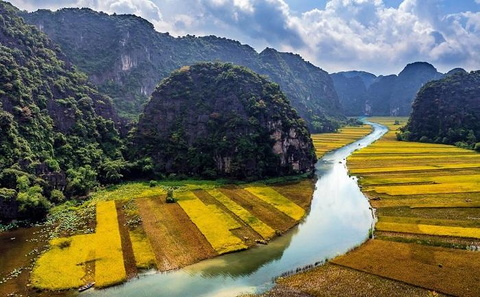Are you ready to enjoy the gorgeous view of the golden rice fields in Tam Coc