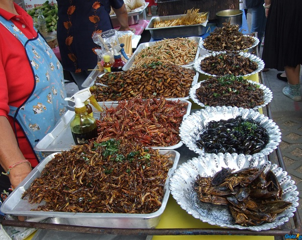 Dry fried insects sold on Cambodian street