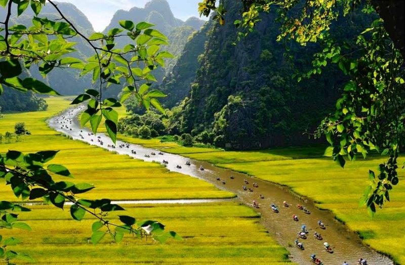 Summer is the best time to travel to Tam Coc and to immerse yourself in nature