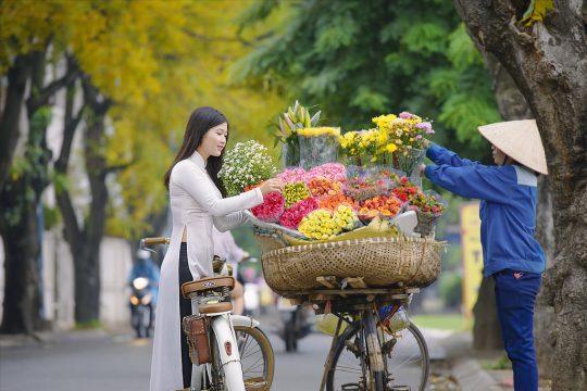 Top 5 best destinations for holiday deals in Vietnam