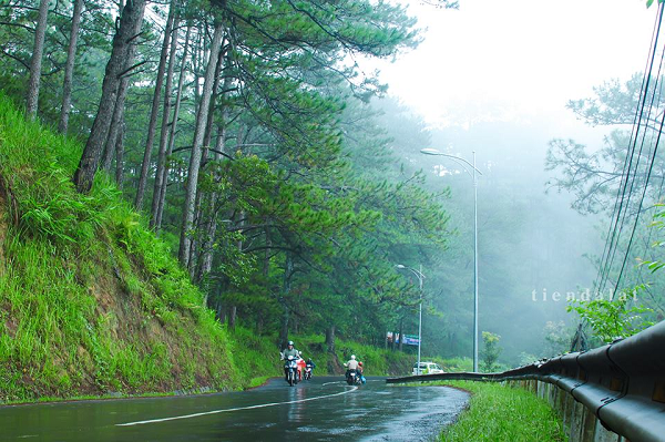 Enjoy the romantic Da Lat in rain season