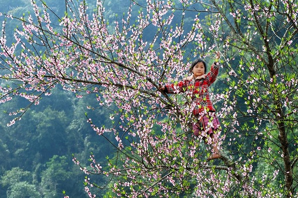 Best Things To Do In Sapa In March 2018