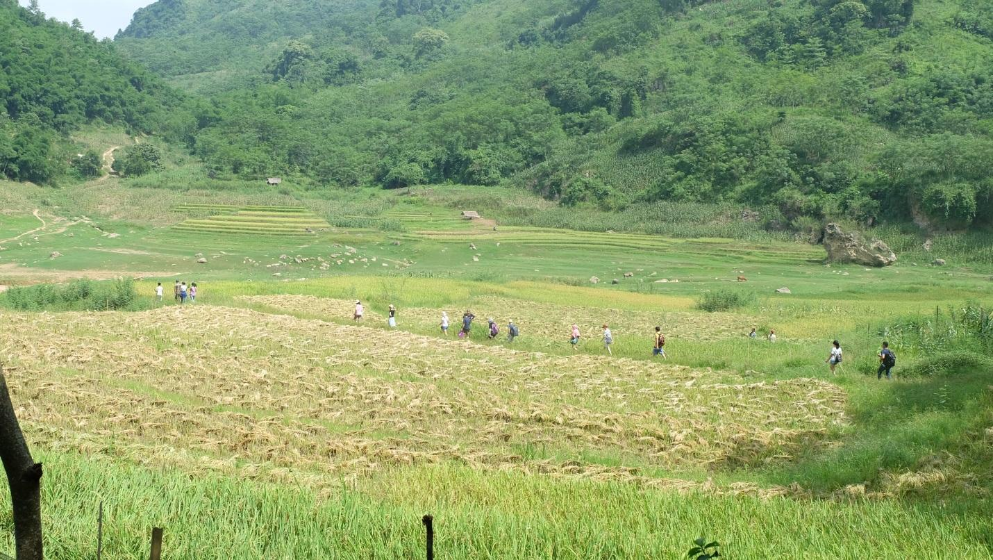 This is a beautiful scenery route with opportunity to experience the life of ethnic minority, local houses and rice fileds