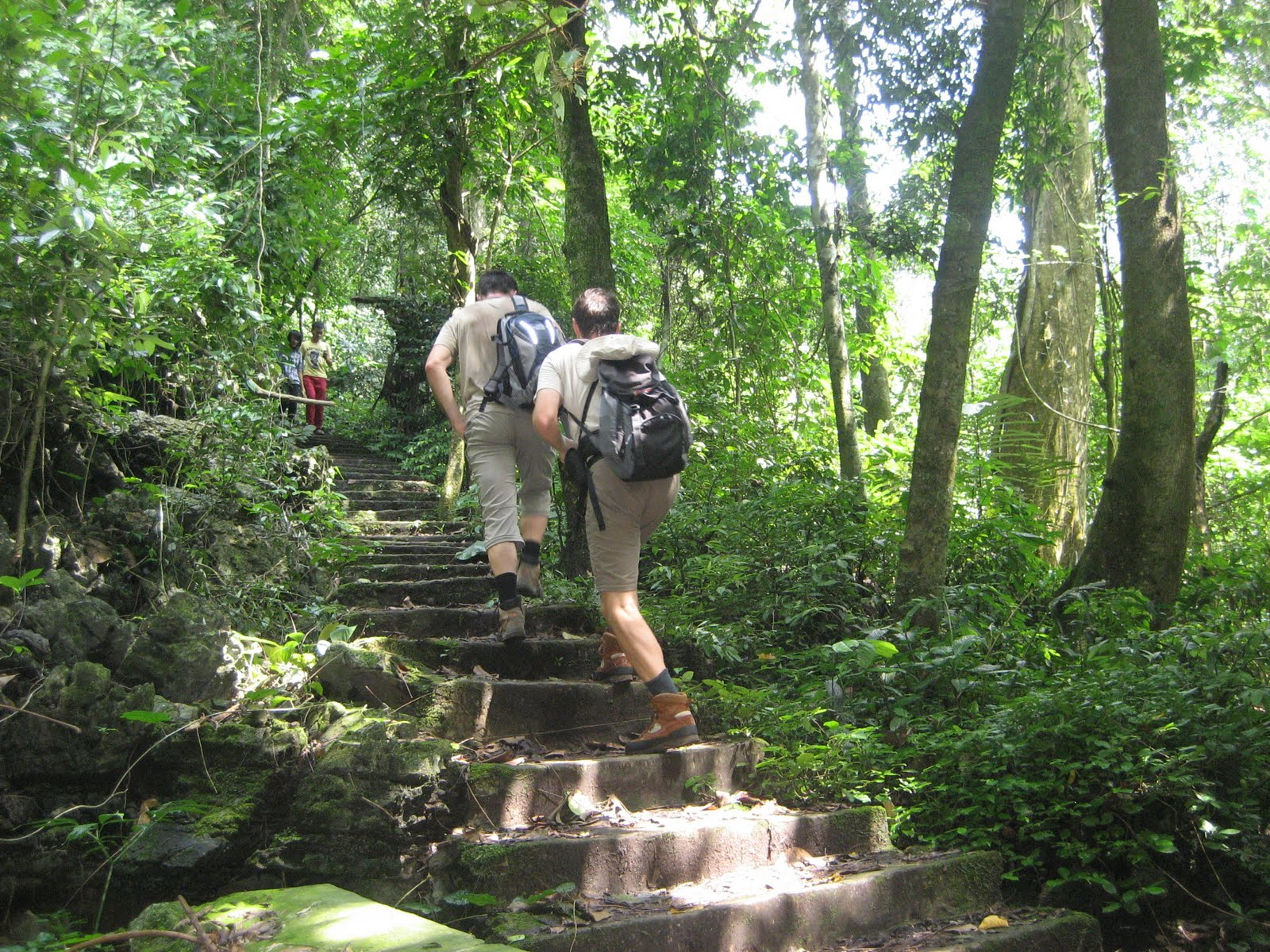 Trekking in Cuc Phuong National Park