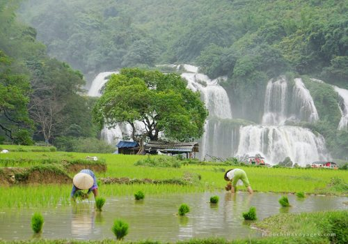 Adventure The Northeast Vietnam 6 Days